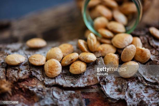 superfood sacha inchi nuts - inca stock pictures, royalty-free photos & images