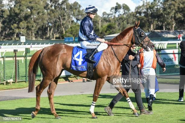 Supergrass ridden by Ethan Brown wins the Madura Finance 0 58 Handicap at Bendigo Racecourse on October 20 2018 in Bendigo Australia