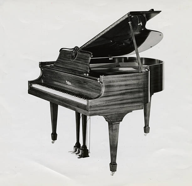 Depiction of Exquisite Piano Pictures | Getty Images