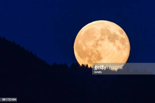 supermoon glowing against blue sky - supermoon stock pictures, royalty-free photos & images