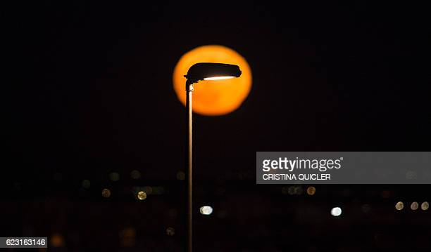 A supermoon rises behind a streetlight in Sevilla on November 14 2016 The phenomenon happens when the moon is full at the same time as or very near...