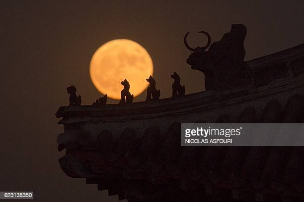 A supermoon rises behind small sculptures standing on the roof of a tower in the Forbidden City in Beijing on November 14 2016 Skygazers headed to...