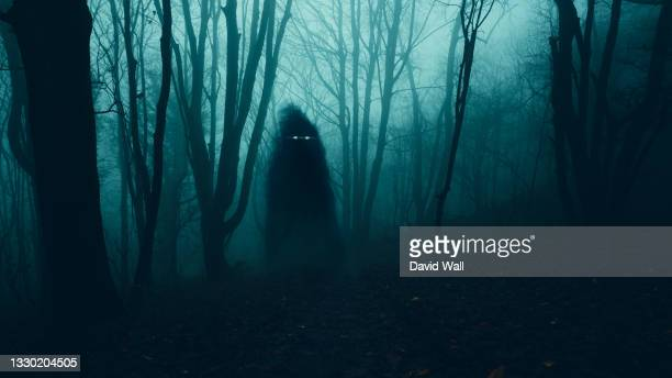 a supernatural concept. of a ghost with glowing eyes floating above the ground . in a spooky, winter forest at night - in silhouette stock pictures, royalty-free photos & images