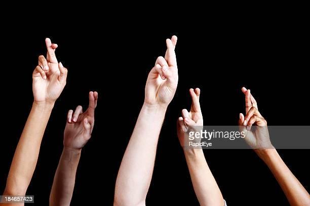 Remportée par les mains avec les doigts croisés contre noir