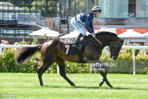 Supido ridden by Beau Mertens heads to the barrier before the Black Caviar Lightning at Flemington Racecourse on February 17 2018 in Flemington...