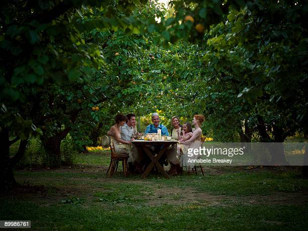 supper alfresco in orchard - distant stock pictures, royalty-free photos & images