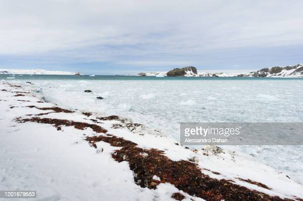 Support area for shipments and landings frozen with the ship in the background on November 04 2019 in King George Island Antarctica