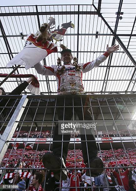 Supporter of 1. FC Cologne is seen prior to the Bundesliga match between 1. FC Cologne and Eintracht Frankfurt at the Rhein Energie Stadium on March...