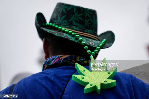 Supporter of cannabis legalization demonstrates outside of the Charleston Gaillard Center ahead of the Democratic presidential debate on February 25,...