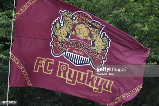 Supporter of FC Ryukyu waves a flag the J.League J3 match between FC Tokyo U-23 and FC Ryukyu at Yumenoshima Stadium on June 16, 2018 in Tokyo, Japan.