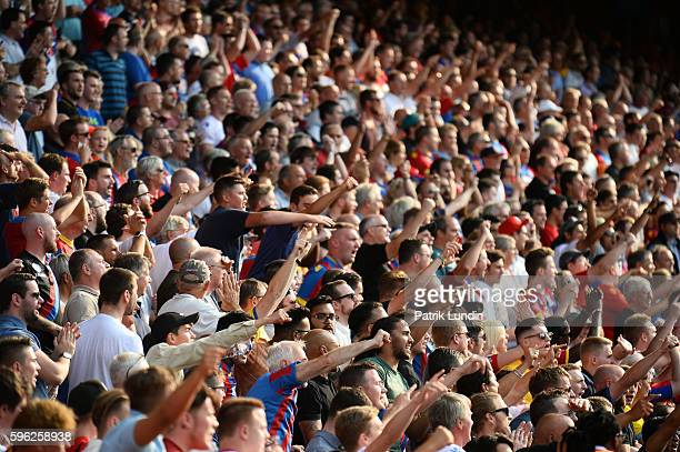 Supporters celebrate after Yohan Cabaye of Crystal Palace scores during the Premier League match between Crystal Palace and Bournemouth at Selhurst...