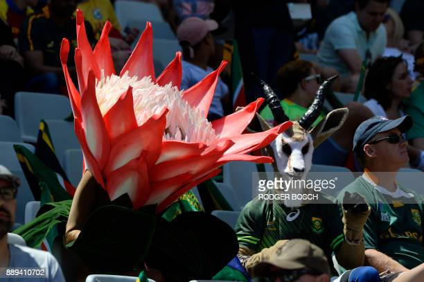 Supporters dressed up as a Protea the South African national flower and a Springbok watch play on the second day of the World Rugby Sevens Series at...