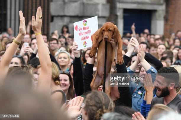 Supporters gather at Dublin Castle for the result Irish referendum result on the 8th amendment concerning the country's abortion laws on May 26 2018...