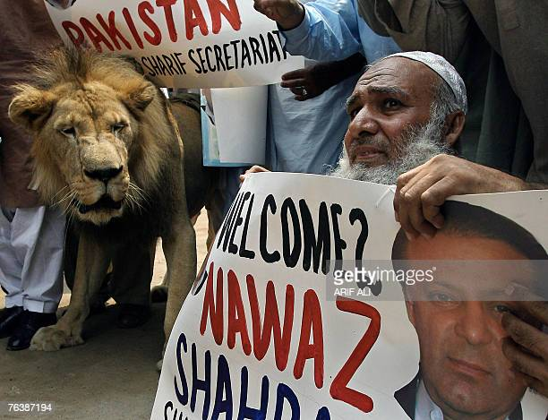 Supporters of deposed Pakistani Prime Minister Nawaz Sharif stage a rally with a lion in Lahore 30 August 2007 Pakistani President Pervez Musharraf...