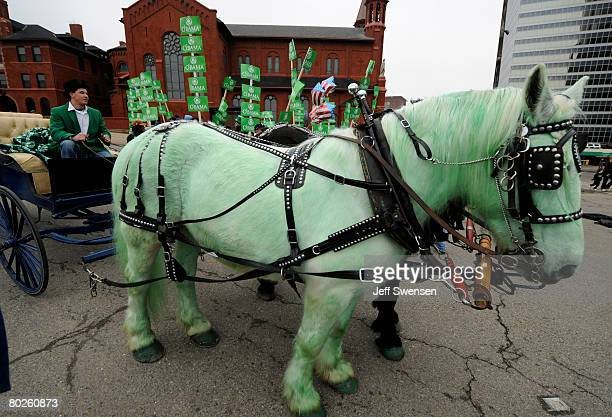 Supporters of presidential hopeful Sen Barack Obama gather behind a green horse during a St Patrick's Day Parade March 15 2008 in Pittsburgh...