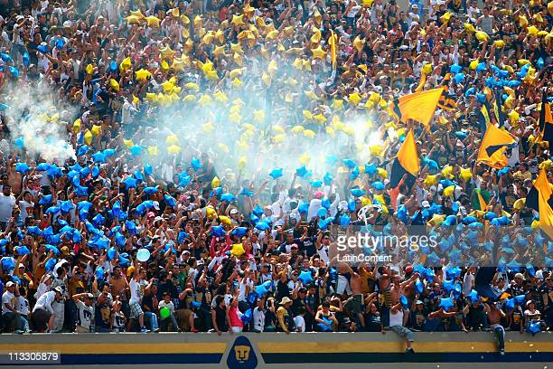 Supporters of Pumas before their match against America as part of the Clausura 2011 at Olympic Stadium on May 1 2011 in Mexico City Mexico