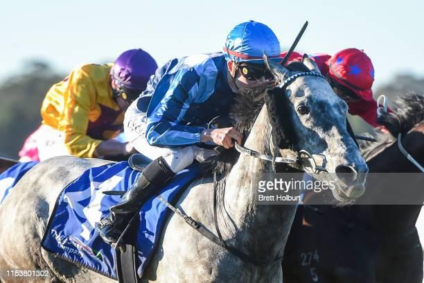 Supreme Harmony ridden by Thomas Stockdale wins the Bendigo Magazine BM64 Handicap at Bendigo Racecourse on July 05, 2019 in Bendigo, Australia.