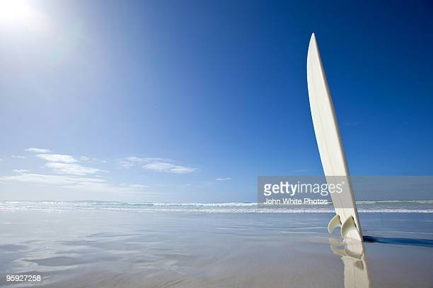 Surf board with lens flare