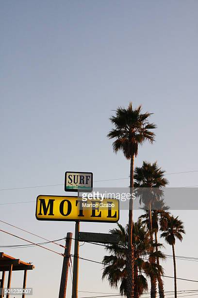 Surf Motel and palm trees at sunset.