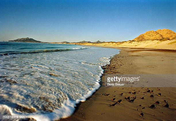 surf rolling into beach, low angle view - boris stock photos and pictures