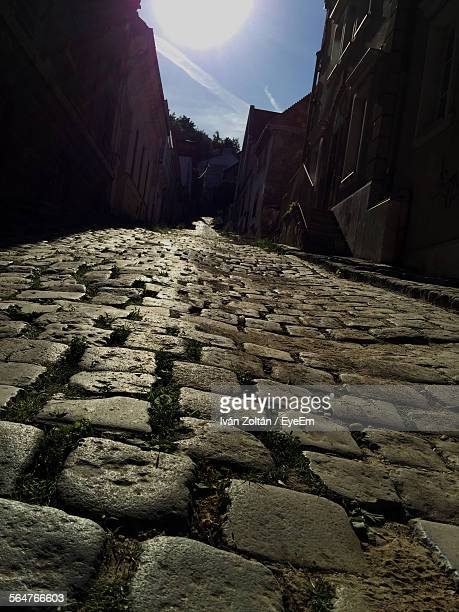 Surface Level Of Cobblestone Pathway