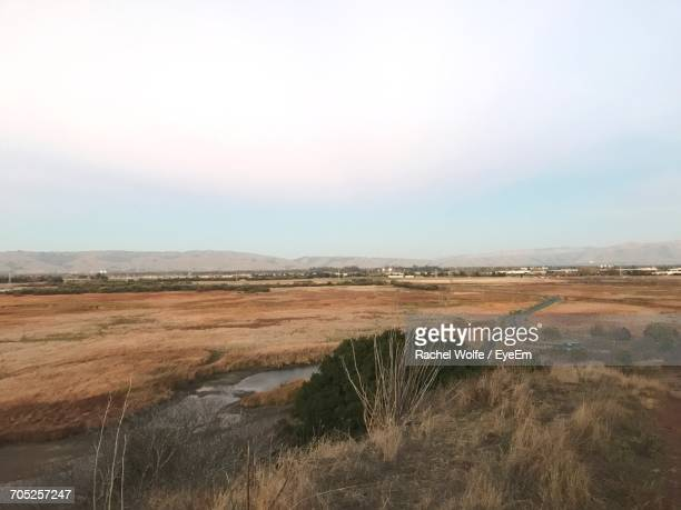 surface level of countryside landscape against clear sky - rachel wolfe stock pictures, royalty-free photos & images