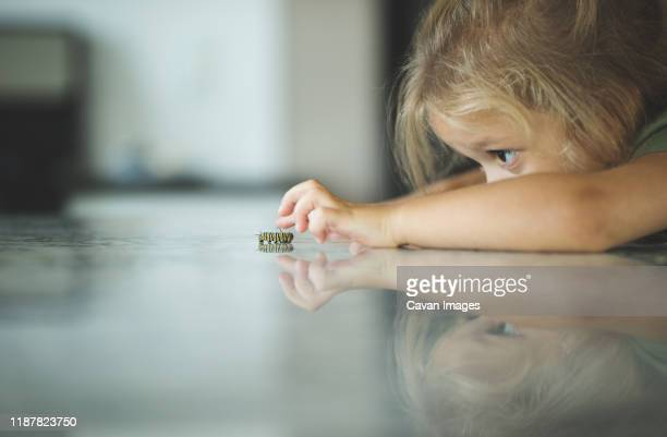 surface level of curious girl looking at caterpillar on floor - curiosity stock pictures, royalty-free photos & images