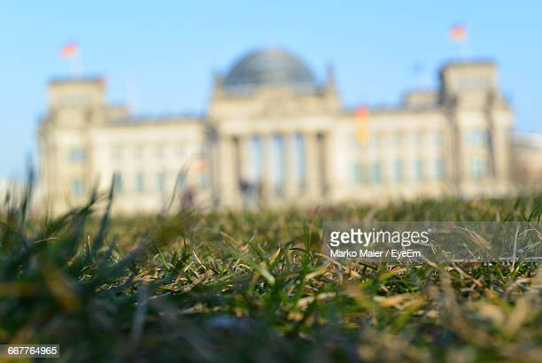 Surface Level Of Grass With Reichstag Building In Background