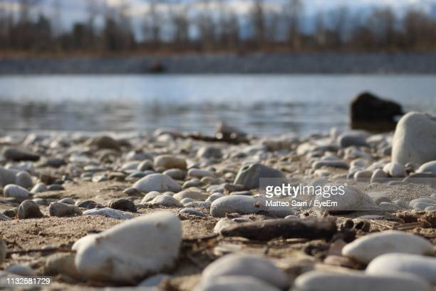 surface level of pebbles at beach - sarri stock pictures, royalty-free photos & images