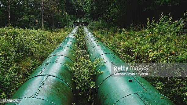 surface level of pipeline along plants - pipeline stock pictures, royalty-free photos & images