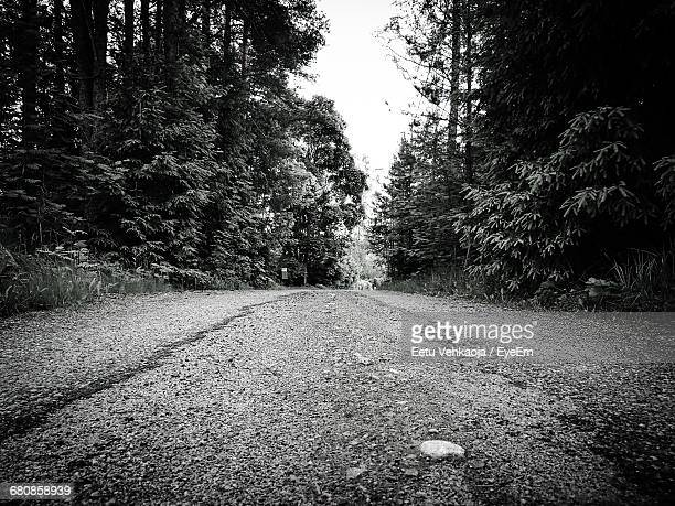 surface level of road along trees - espoo stock pictures, royalty-free photos & images