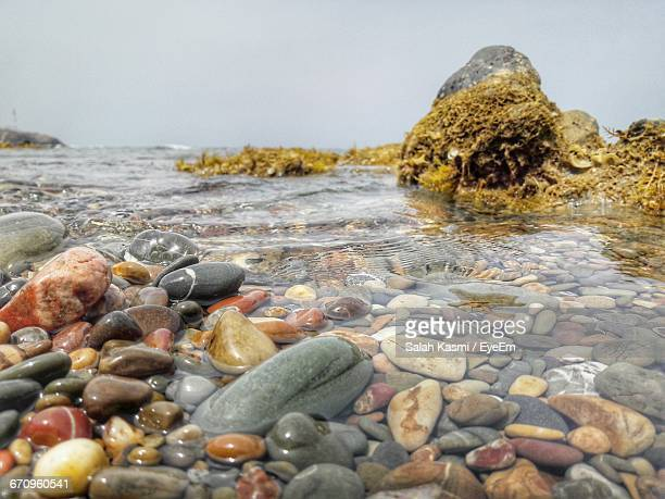 surface level of rocks on beach - salah stock photos and pictures