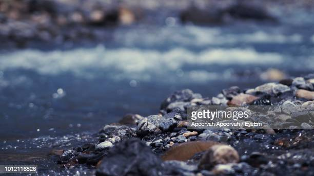 surface level of rocks on shore - rock stock pictures, royalty-free photos & images