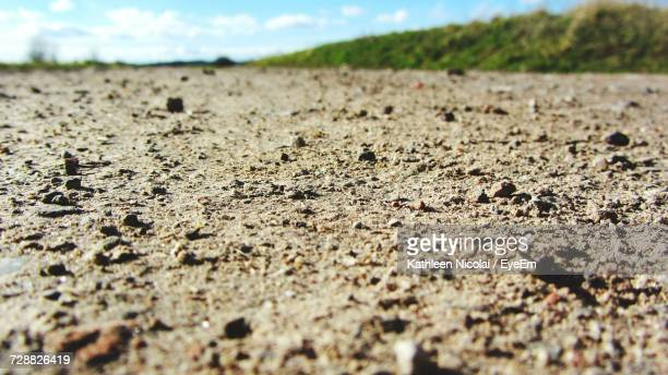 surface level of sandy field - low angle view stock pictures, royalty-free photos & images