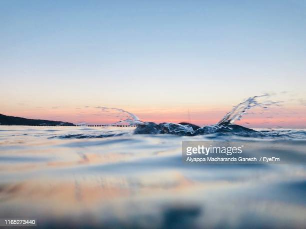 surface level of sea against sky during sunset - rostock stock pictures, royalty-free photos & images