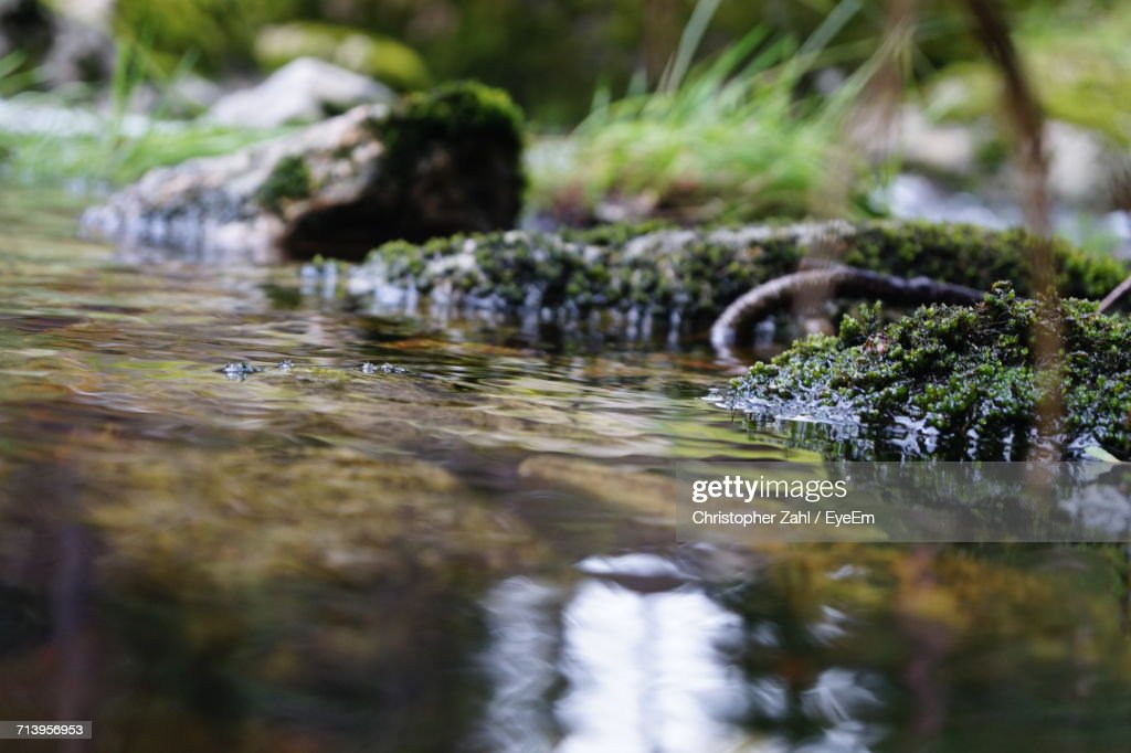 Surface Level Of Small Stream : Stock Photo