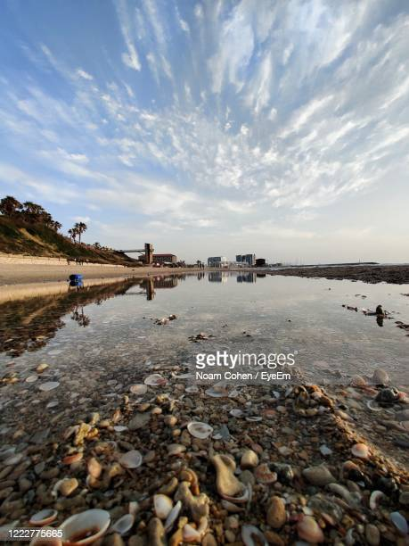 surface level of stones on beach against sky - noam cohen stock pictures, royalty-free photos & images