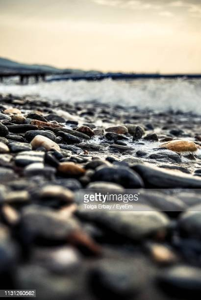 surface level shot of pebbles on shore at beach - tolga erbay stock photos and pictures