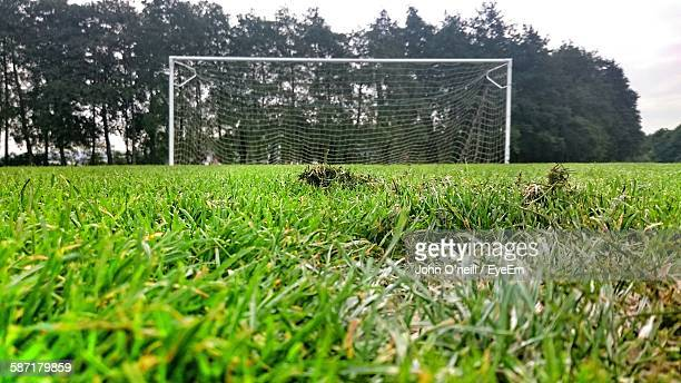 surface level view of green grass in soccer field - football bulge stock photos and pictures