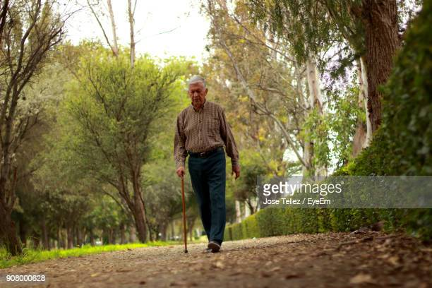 surface level view of senior man walking at park - walking cane stock pictures, royalty-free photos & images
