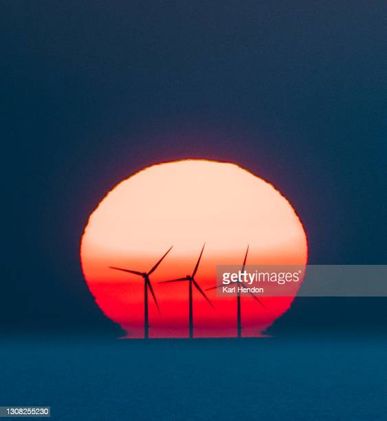 a surface level view of wind turbines against the setting sun - stock photo - wind stock pictures, royalty-free photos & images