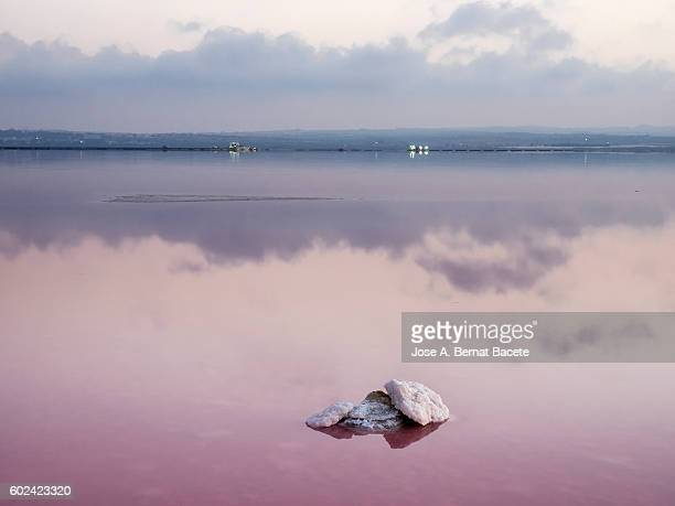 Surface of the water of pink color, of a salty lake to the late afternoon, with the sky and the reflected clouds