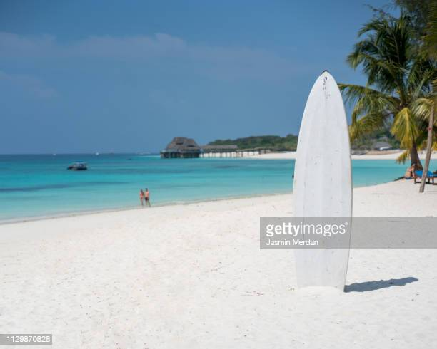 surfboard on beach in tropical island - surfboard stock pictures, royalty-free photos & images
