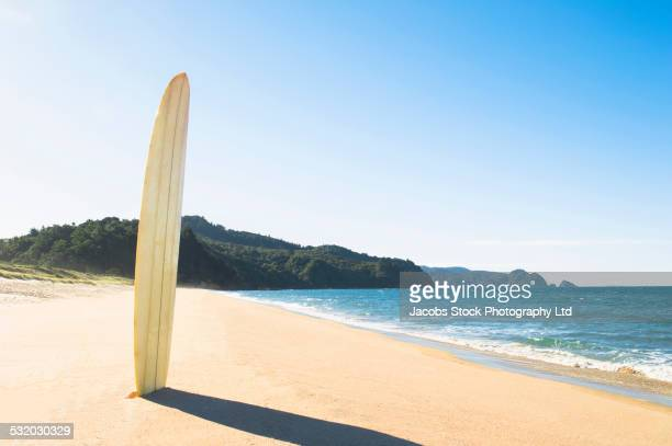 Surfboard upright in sand on beach