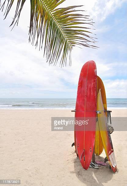 surfboards at ocean beach