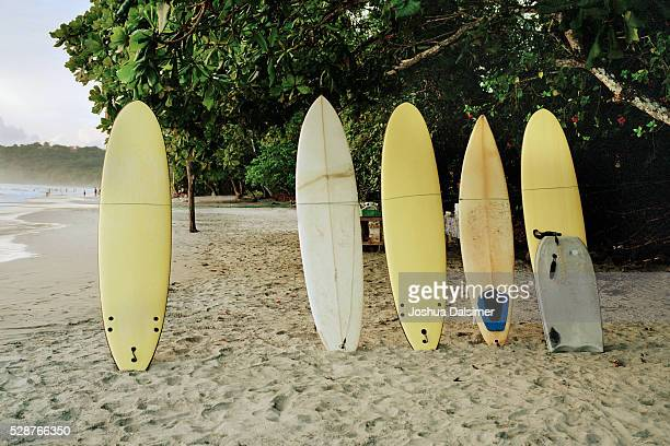 Surfboards on a beach