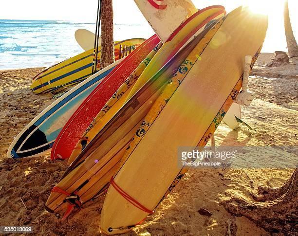 Surfboards resting on sand Waikiki beach sunny day