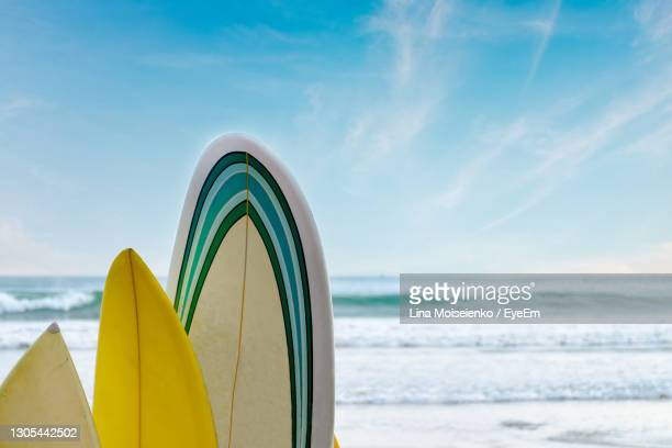 surfboards stand in a row against the waves and blue sky, concept of leisure, sports lifestyle, - sri lanka stock pictures, royalty-free photos & images