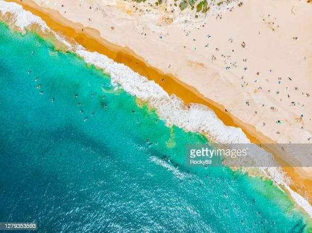 surfare och solbadare på praia do beliche sett från drönaren, nära sagres, portugal - sagres bildbanksfoton och bilder