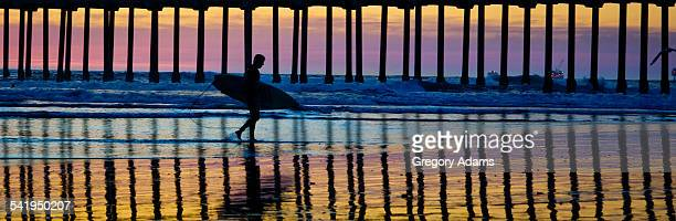 A surfer and wharf pilings silhouetted at dusk